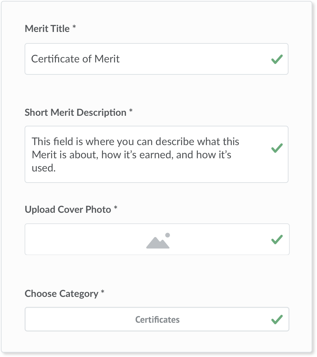 The create a merit template screen from the Sigma application